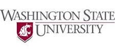 Washington State College